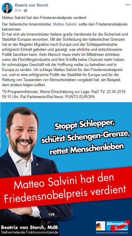BvS_Salvini